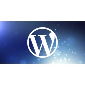 WordPress : 40,9% des sites au niveau mondial l'utilisent